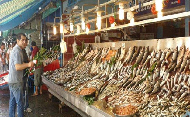 Balık Azalınca Fiyatlar Uçtu