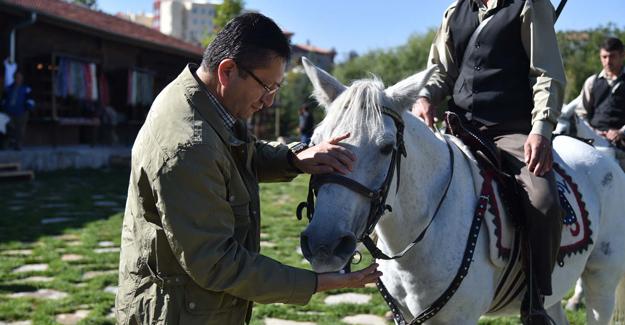 Başkan Tiryaki'den Altınköy'ün Hayvanlarına Özel İlgi