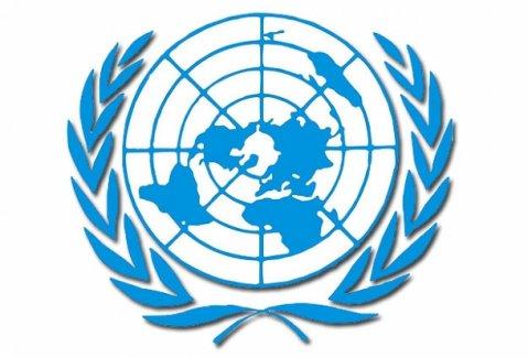 BM'nin Ana Gündemi 'Kalkınma'