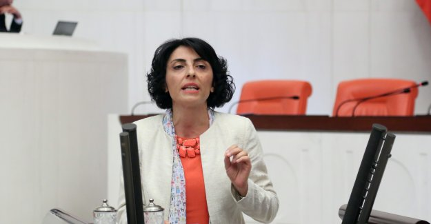 CHP'li Altaca Kayışoğlu:Turizm Hareketliliğinden İznik Hak Ettiği Payı Alamıyor