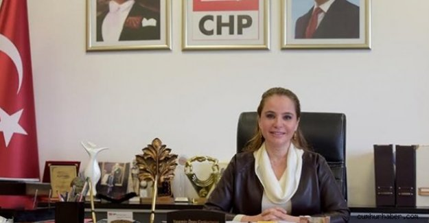 CHP'li Cankurtaran: OHAL'i Pazarlık Konusu Haline Getirebilirler