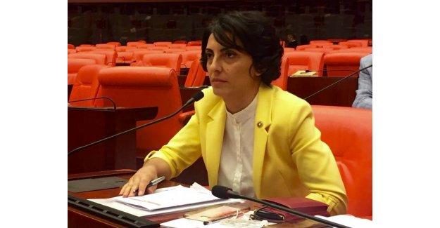 CHP'li Kayışoğlu: RO-RO İskelesi Yapılmak İstenen Bölgede Çıkan Yangın Şüphe Uyandırıyor