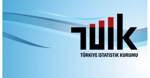 TÜİK, Haziran Ayı Finansal Yatırım Araçlarının Reel Getiri Oranlarını Açıkladı