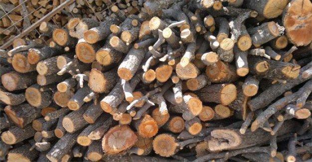 Oduna Dayalı Orman Ürünlerinin Satışından Alınan Pay Sıfırlandı