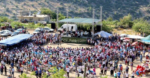 Silifke'de İncir ve Fıstık Festivali Gerçekleşti