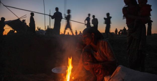 Beşiktaş Belediyesi ve BM Ortaklığıyla Mülteci Temalı Sergi Açılacak