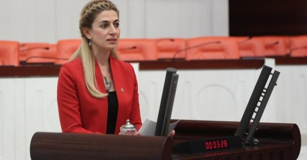 "CHP'li Engin ""Diyabetli Sayımız 7 Milyonu Geçti, Bir An Evvel Önlem Alınmalı"""