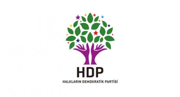 HDP'nin Meclis Başkan Adayı Selma Irmak