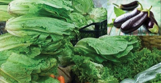 Rusya'nın Sebze Yasağı Bugün Kalkıyor