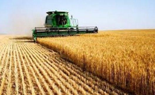 Tarım-ÜFE Mart'ta Yüzde 0.52 Arttı
