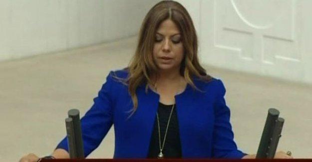 CHP'li Altıok'tan İnsan Hakları Raporu