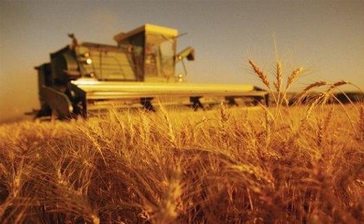 Tarım- ÜFE Mayıs Ayında Yüzde 0.55 Azaldı