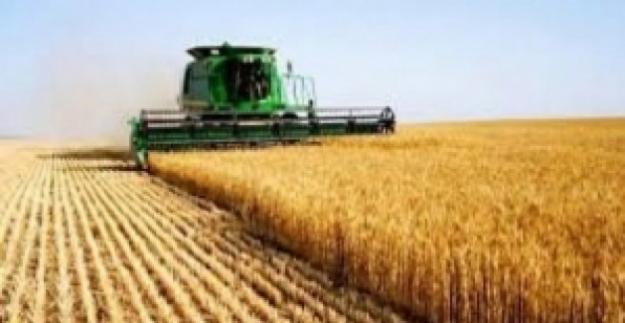 Tarım-ÜFE Kasım'da Yüzde 2,53 Arttı