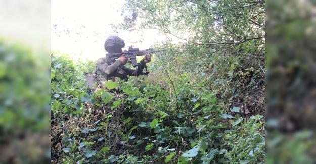 Pençe Harekâtında Toplam 43 PKK'lı Terörist Etkisiz Hale Getirildi