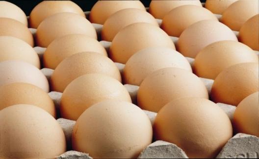 Tavuk Yumurtası Üretimi Nisan'da Bir Önceki Aya Göre Yüzde 3,4 Azaldı