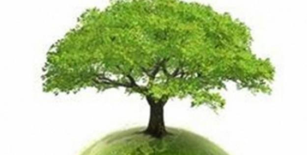 Çevre Koruma Harcamaları 2018 Yılında 38,2 Milyar TL Olarak Gerçekleşti