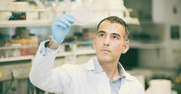 Prostat Kanserini Odağında Yok Edecek Yeni İlaç
