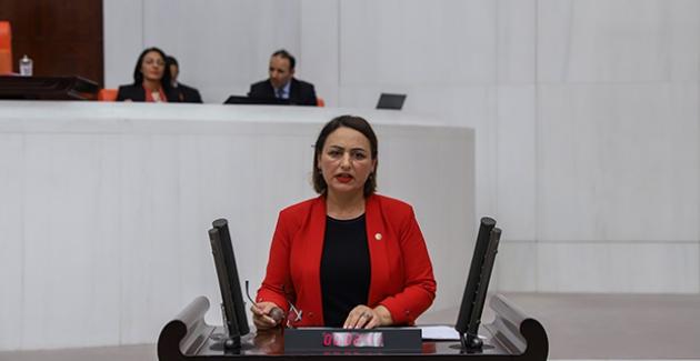 """CHP'li Şevkin: """"Kamyoncu Esnafı İflasın Eşiğinde!"""""""