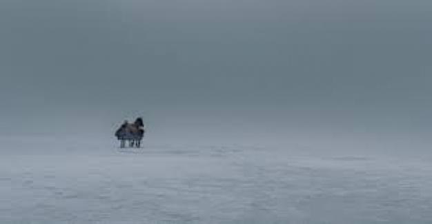 """""""KAPAN"""" Filmi Ekibi Seyircisinin Sorularını Yanıtladı"""