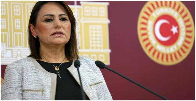"""CHP'li Şevkin: """"Gazi Ve Şehit Yakınlarının Sorunları Çözülmelidir"""""""