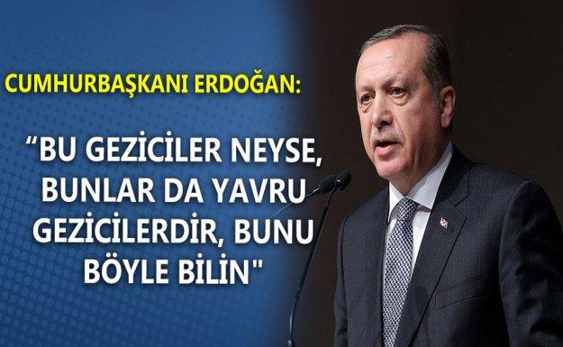 Erdoğan: Bu Geziciler Neyse Bunlar Da Yavru Gezicilerdir