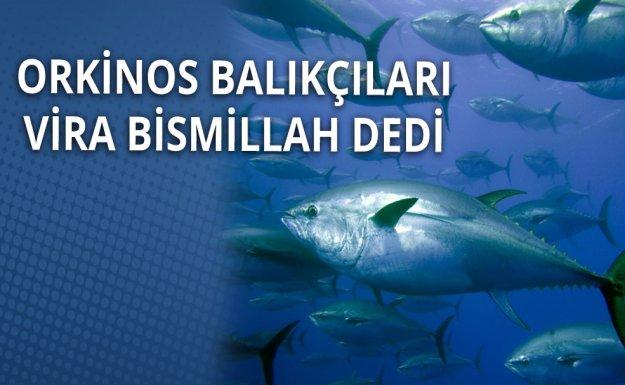Balıkçılar Orkinos İçin Akdeniz'e Açıldı