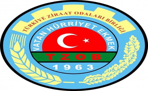 TZOB Genel Başkanı Bayraktar: Bademde üretim, tüketimi karşılamıyor