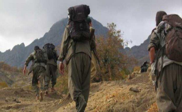 Kobani Savunma Bakanı: PKK'ya saldırılar IŞİD'e moral veriyor