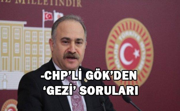 -CHP'Lİ GÖK'DEN 'GEZİ' SORULARI