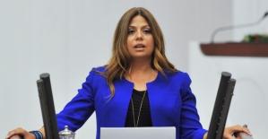 CHP'li Altıok: Kaygılıyız Ama Teslim Olmayız