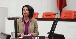 CHP'li Kayışoğlu: Bakanlık Yaşar Kemal Müzesi İçin Hemen Harekete Geçmeli