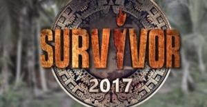 Survivor 2016 Yılında Televizyon Ekranlarının Zirve İsmi