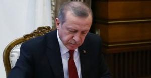 Cumhurbaşkanı Erdoğan Danıştay Üyeliğine Taci Bayhan'ı Yeniden Seçti