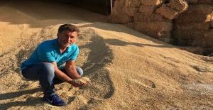 """CHP'li Sarıbal: """"İktidar Yabancı Üreticiyi Destekliyor"""""""