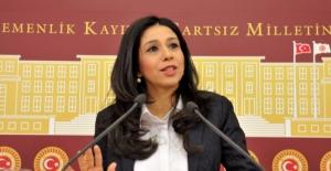 CHP'li Yedekçi Tarihi Eser Sayısında Eksilme Konusunu Meclise Taşıdı