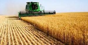 Tarım - Üfe Ekim'de Yüzde 1,78 Arttı
