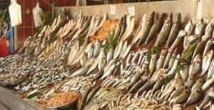 Balığın Bilinmesi Gereken 10 Önemli Yararı