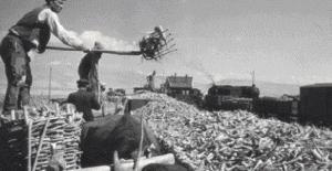 Şeker Fabrikalarının Satış Kararı Resmi Gazete'de