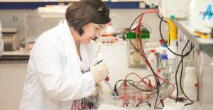 Boğaziçi Üniversitesi'nde Doğaya Ve İnsana Zarar Vermeyen Pestisit Geliştiriliyor