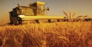 Tarım-ÜFE Haziran'da Yüzde 0.08 Arttı
