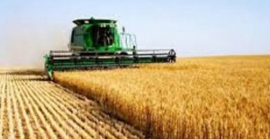Tarım ÜFE Eylül'de Yüzde 3,68 Arttı