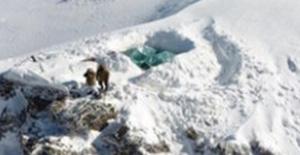 Tunceli'de Olumsuz Hava Koşullarından Etkilenen 2 Asker Şehit Oldu