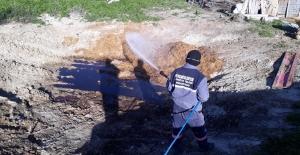 Beypazarı'nda Larva Dönemi İlaçlama Çalışmaları Başladı