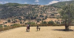 Bodrum Ve Milas Artık Atlarıyla Da Özel