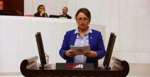 CHP'li Şevkin Engellilerin 'İş' Mağduriyetini Meclis Gündemine Taşıdı