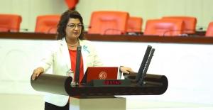 """CHP'li Şahin: """"Orman Yangınlarının Önlenmesine Dair Önerge  AKP Ve MHP Oylarıyla Reddedildi"""""""