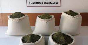 Diyarbakır'ın Lice İlçesinde 158 Kg Esrar Maddesi Ele Geçirildi