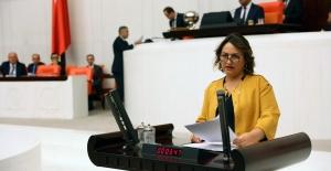"""CHP'li Şevkin """"İşsizlik Arttı, Krediler Battı!"""""""