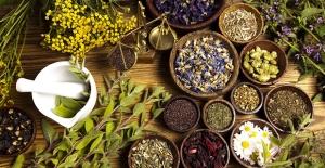 Kanser Hastalarına Bitkisel İlaç Uyarısı