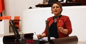 """CHP'li Şevkin: """"Halk Yoksullukla Boğuşuyor, Sarayın Bütçesi Sürekli Artıyor"""""""